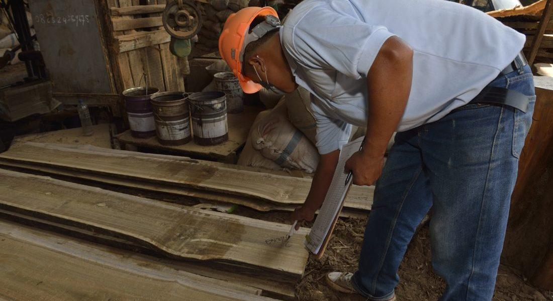 L'addetto di una segheria conduce una verifica sulla provenienza delle assi di legno in lavorazione