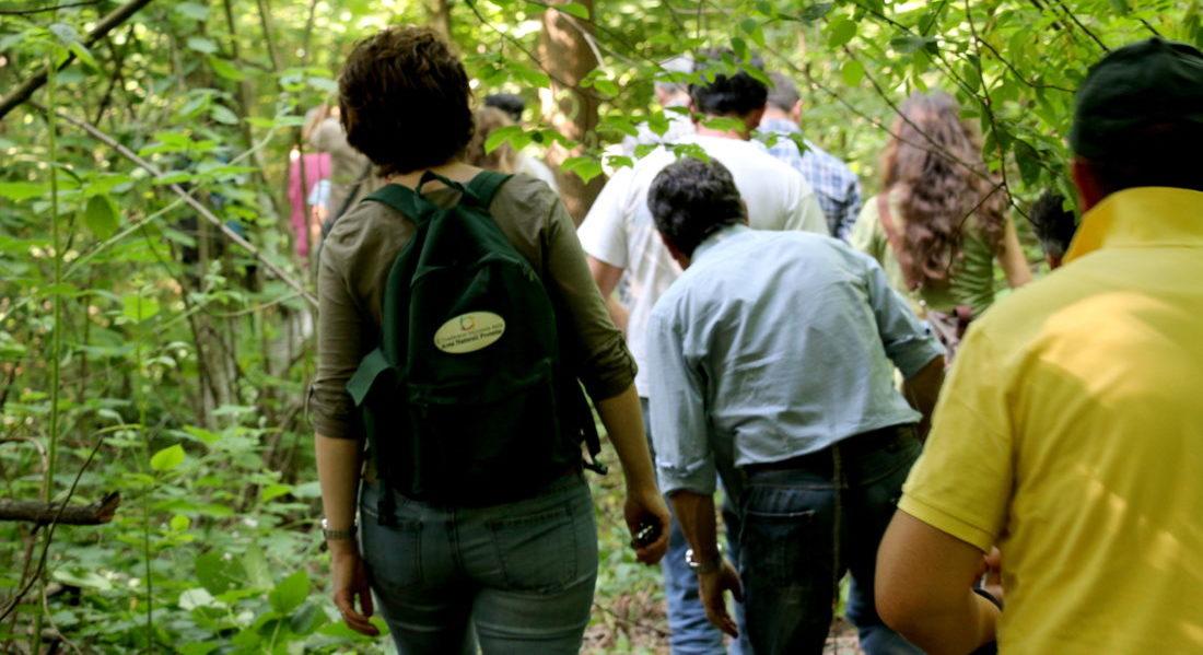 Piccoli proprietari e stakeholder camminano all'interno del bosco durante una giornata di consultazione