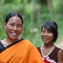Relazione ONU sugli Obiettivi di Sviluppo Sostenibile conferma il ruolo della certificazione forestale